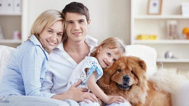 Wills & Trusts dog-young-family Direct Wills Kew